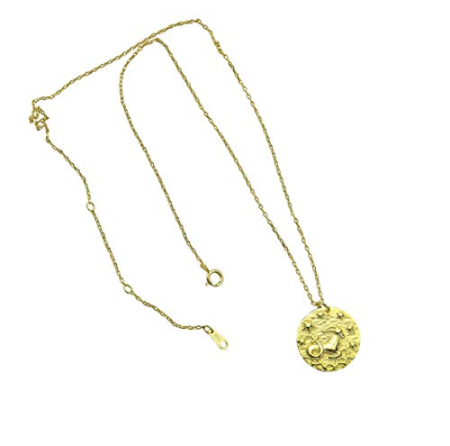 AC Collar para Hombre y Mujer, en Oro de 18 quilates, plata de ley 925, Regalo de cumpleaños de novia hija, envuelto para Regalo, Colgante, signo del Zodiaco cualquiera. (Capricornio)