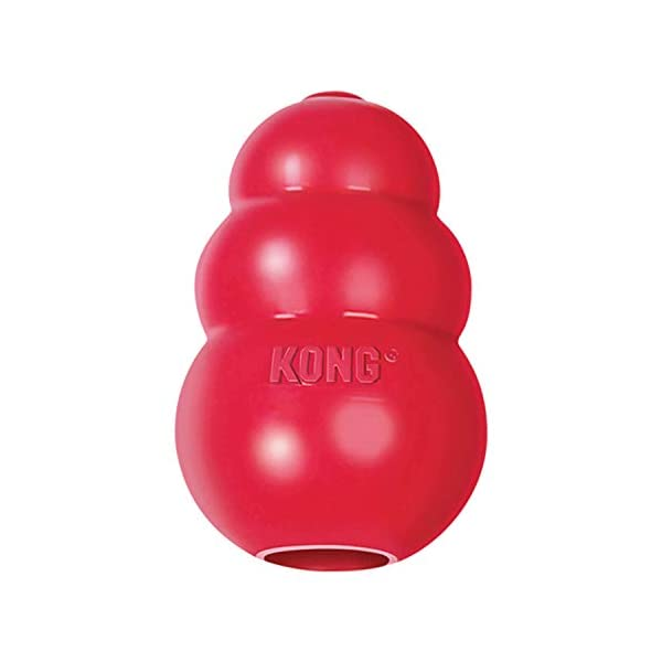 KONG – Classic Dog Toy – Durable Natural Rubber – Fun to Chew, Chase and Fetch