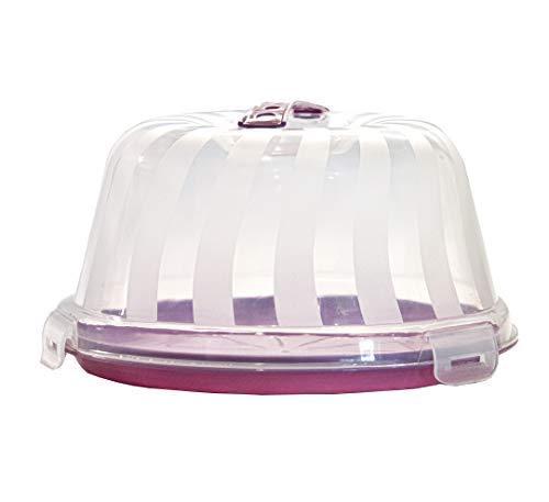 Top Shelf Elements Carrier for Bundt Cakes, Pie Carrier, Cheesecake Carrier, Stylish Cake Carrier with Pretty Lilac Color