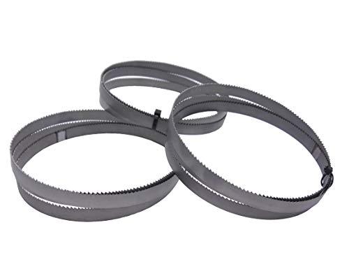 Juego de 3 cintas de sierra bimetal M 42, dimensiones 1440 x 13 x 0,65 mm, 8/12 ZpZ, por ejemplo para FEMI NG120XL, ABSNG120, 784 XL, 784, Berg & Schmid TBS 102, Alfra, Flott, Metallkraft