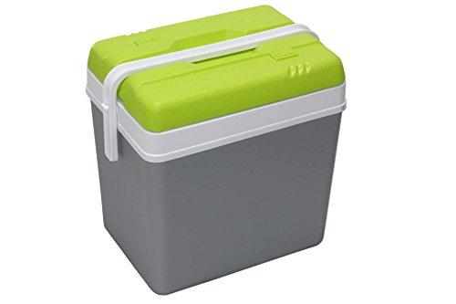 EDA Kühlbox 24 l grau und grün für Flaschen 2 l stehend