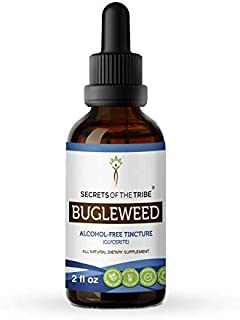 Bugleweed Tincture Alcohol-Free Liquid Extract, Organic Bugleweed (Lycopus Virginicus) Dried Herb (2 FL OZ)