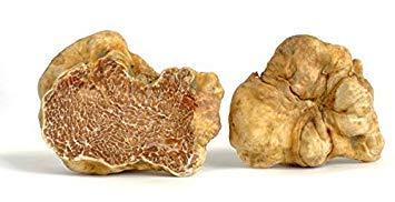 Potseed Germinazione I Semi: Tuber Magnatum Truffel Semi Fungo micelio Tartufo Italiano Tartufo 30 Grammi