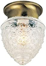 Portfolio Brass Ceiling Flush Mount