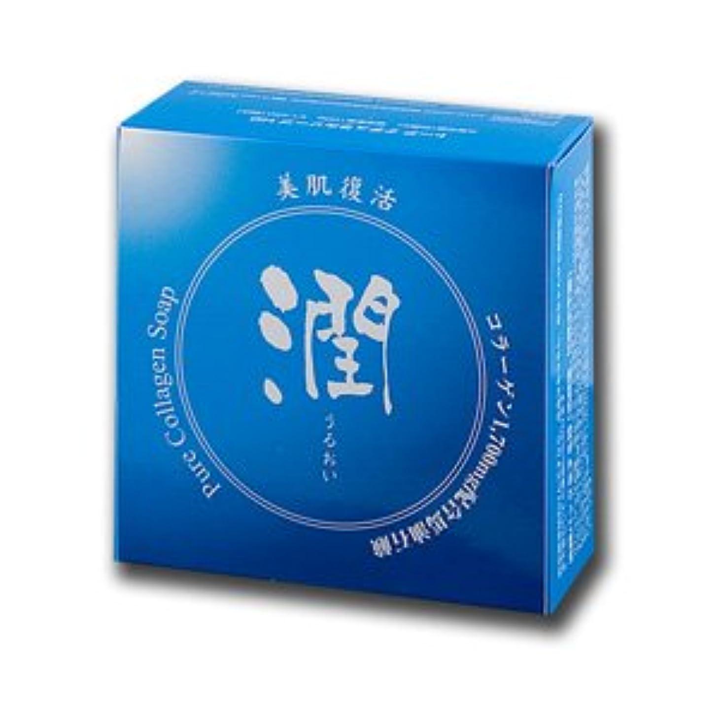 滴下慣れているパワーセルコラーゲン馬油石鹸 潤 100g (#800410) ×3個セット