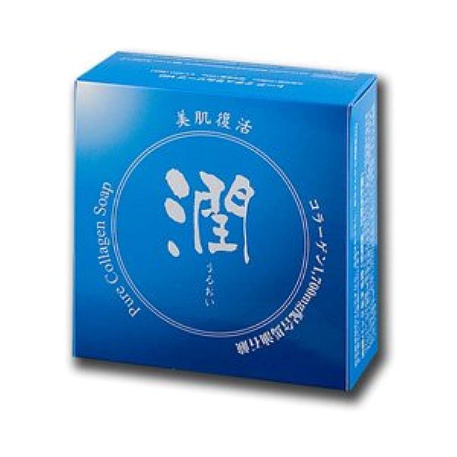 お互い抜粋悲惨コラーゲン馬油石鹸 潤 100g (#800410) ×6個セット