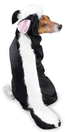 Casual Canine Lil' Stinker Dog Costume