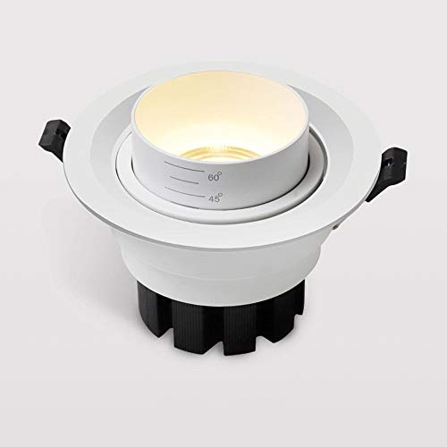 Any leampp LED Downlight Verstelbare verschillende hoeken inbouw plafond ronde witte decoratieve paneel met Junction Box Driver (Color : 4000k nature light, Size : 7w)