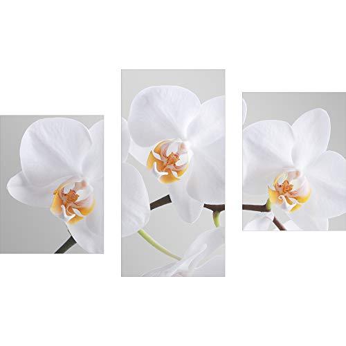 decorwelt | Dreiteiliges Wandbild 3 Teilig Acrylglasbilder Acryl Glasbild Orchidee Weiß 90x60 cm Wandbilder Wohnzimmer Esszimmer Deko Wanddeko