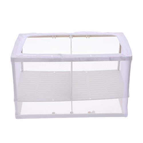ueetek Fish brueter Net Brut Brut congelatore inkubator con ventosa per acquario (colore casuale)