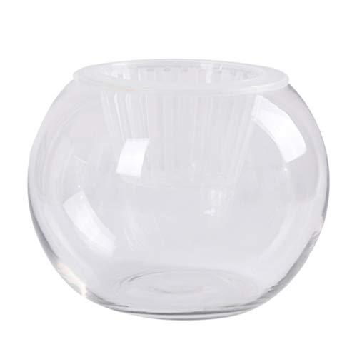 DOITOOL 2 Piezas de Vidrio Terrario Burbuja Cuenco Hidropónico Soporte de Planta Burbuja Pecera Decoración del Hogar Centro de Mesa 20X15cm