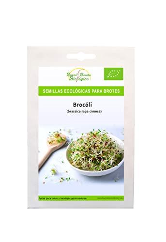Semillas ecológica para brotes Brocoli de Bueno Bonito Biológico. Semillas para germinar brotes de brocoli ecológicas