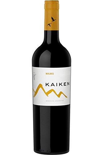Kaiken Mendoza Malbec Rotwein 2019 (1 x 0,75L Flasche)