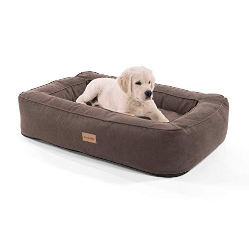 brunolie Bruno mittlerer Hundekorb, waschbar, hygienisch und rutschfest, orthopädisches Hundebett mit Kissen und atmungsaktivem Obermaterial in Beige, Größe M (80 x 55 x 17 cm)