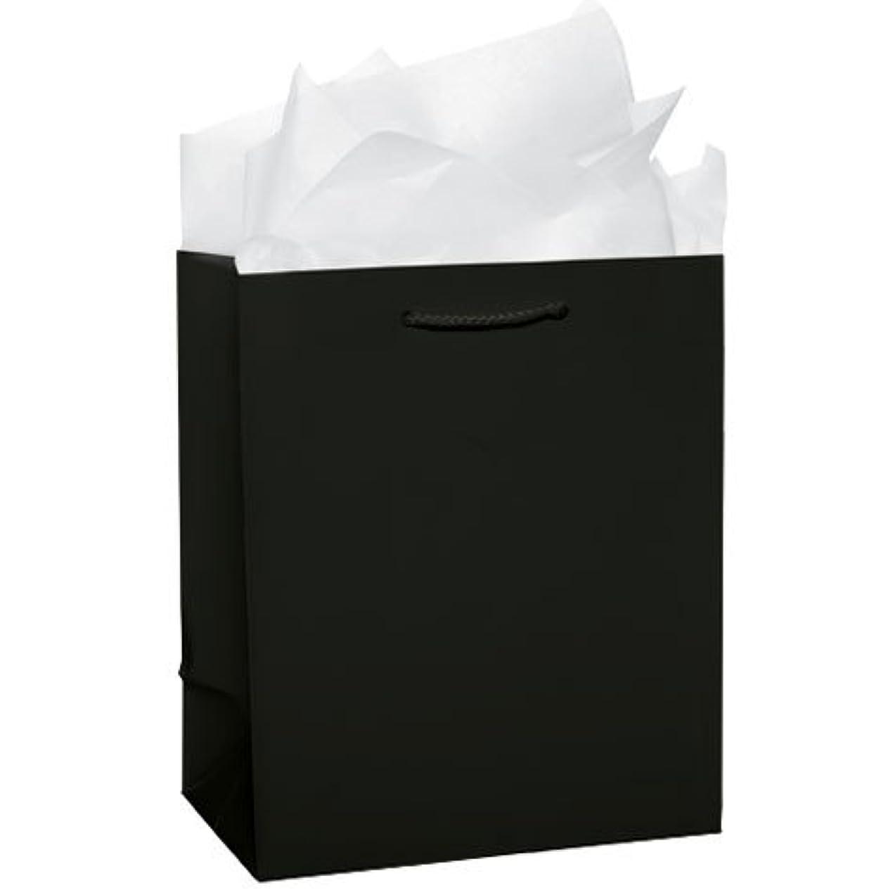 Black Solid Glossy Bag Medium Value Pack | 12 Ct