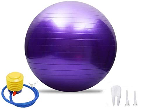 maimai Gym Ball Exercise Fitness Yoga Pregnancy Anti Burst 55cm 65cm 75,Fitness Yoga or Pilates Soft Ball,Exercise Ball - 55 to 85cm Extra Thick Anti-Burst Yoga (75cm, Púrpura)