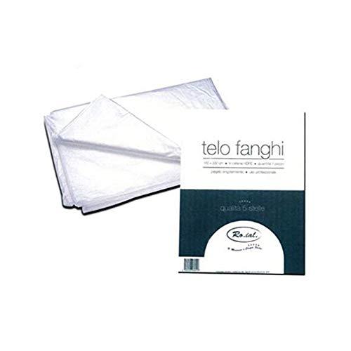 50 Telo Fanghi 160x200cm in cartene HDPE