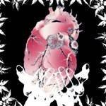 黒木渚「あたしの心臓あげる」のCDジャケット