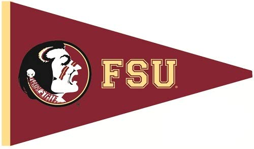 WiggleWalls 9 Inch FSU Osceola Logo Pennant Decal Flag Florida State University Seminoles Noles FS FL Removable Wall Sticker Art NCAA Home Room Decor 9 by 5 Inches