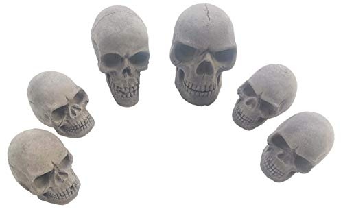 Amazeng Skull Charcoal briquettes Handmade, for Indoor or Outdoor, Campfire, BBQ Charcoal, Gothic Charcoal(Qty 6, Black)