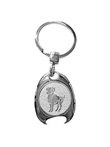 Sterrenbeeld raam motief sleutelhanger, zilverkleurig, in elegante geschenkdoos met winkelwagenchip en flesopener | Cadeau | Mannen | Vrouwen | Sport | Chip | Boodschappenschip | Opener