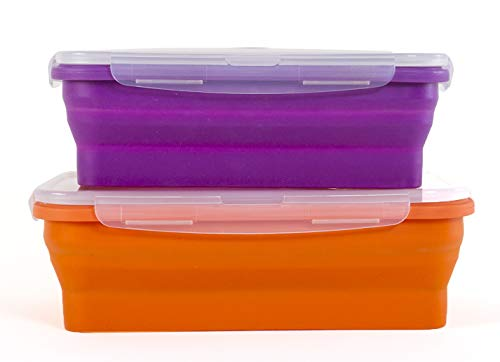 Thin Bins Collapsible Containers – Set of 2 Silicone Food Storage Containers – BPA Free Microwave Dishwasher and Freezer Safe - No more cluttered container cabinet XL