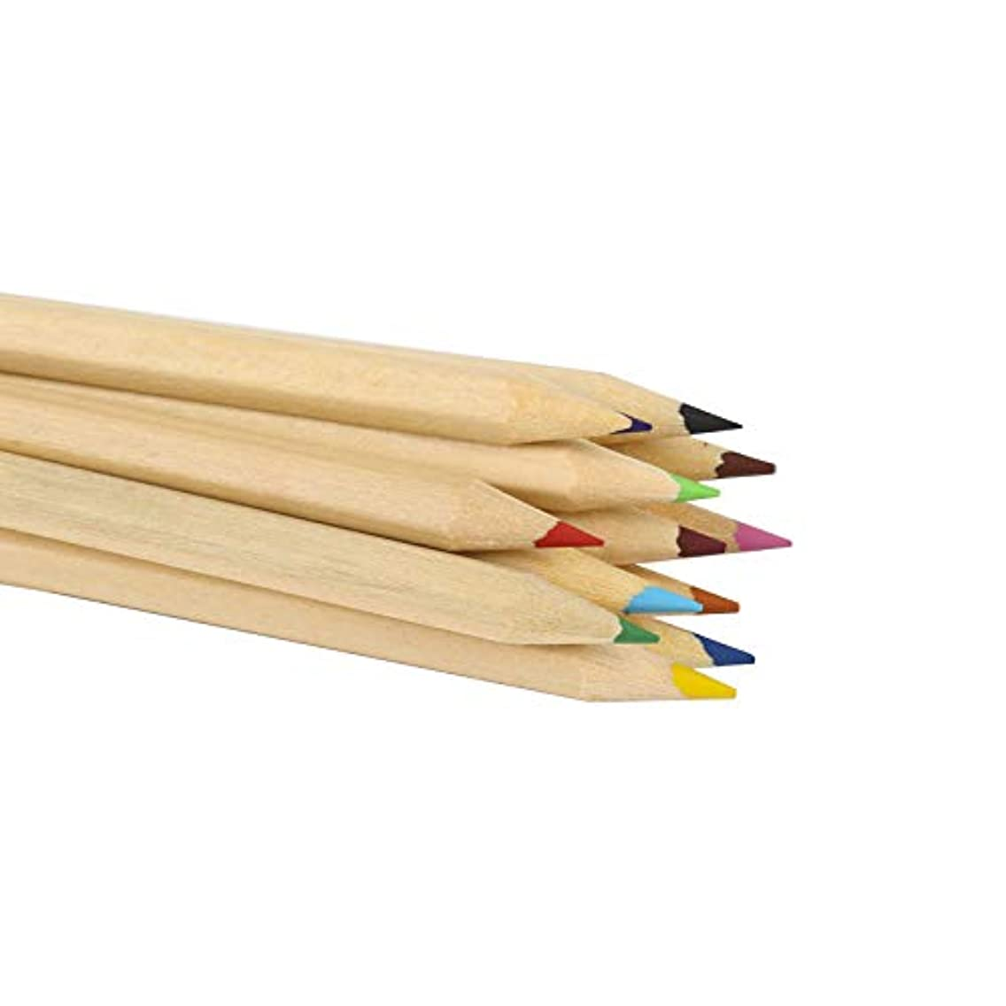 TENPEN -12-Color Colored Pencils Set for Adults and Kids/Vibrant Colors,Drawing Pencils for Sketch, Arts, Coloring Books (Cylinder)