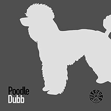 Poodle Dubb
