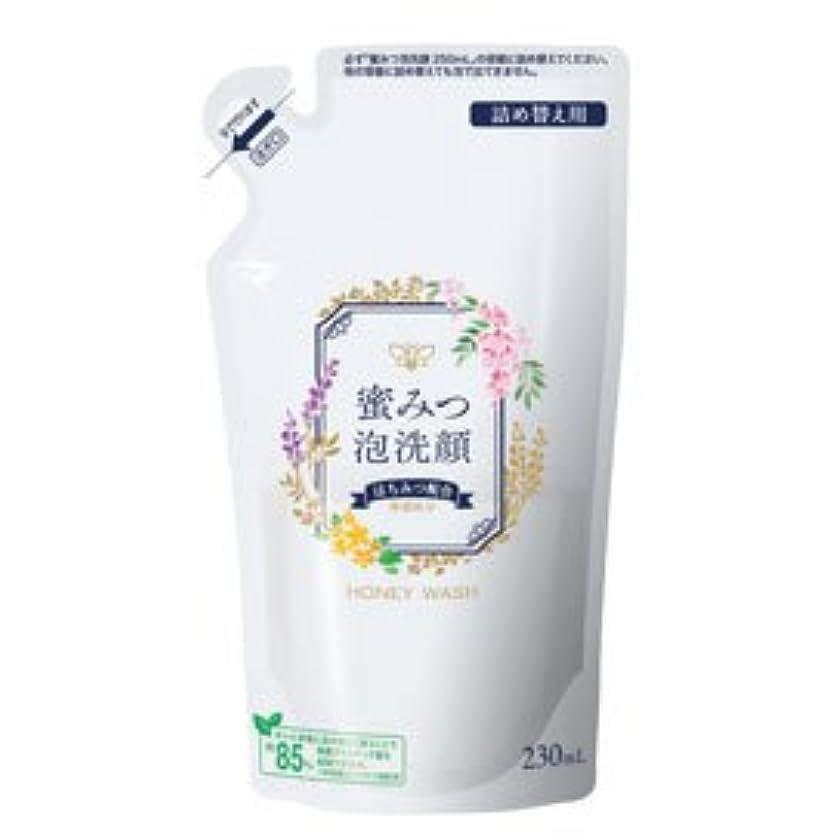 名門マカダム理解蜜みつ泡洗顔 230mL(詰替用)