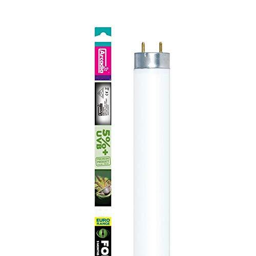Arcadia Forest Reptile Euro Range Lampe à 5 % d'UVB D3