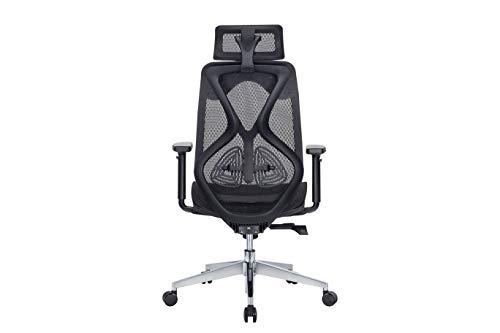 MISURAA Aluminium High Back Ergonomic Office Chair (Black)