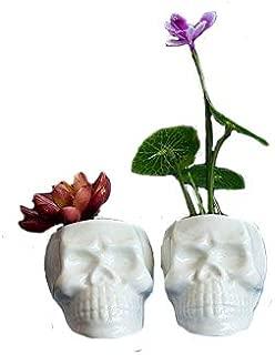 Sea star Set of 2 Cute skull Flower Pot,Modern White Ceramic Succulent Planter Pots / Tiny Flower Plant Containers (Skull)