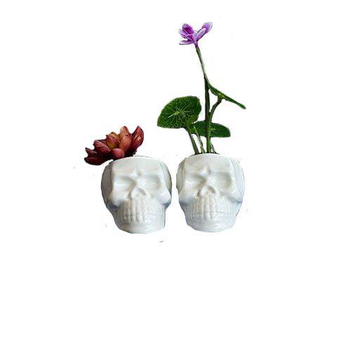 Sea Star Set of 2 Cute Skull Flower Pot,Modern White Ceramic Succulent Planter Pots/Tiny Flower Plant Containers (Skull)