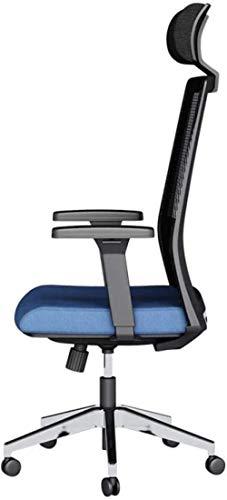 HOLPPO-Desk Multi-función de elevación Silla giratoria, Simple reclinado del Ministerio del Interior ergonómico de Malla Transpirable Silla de la computadora de los Asientos, Negro (Color : Negro)