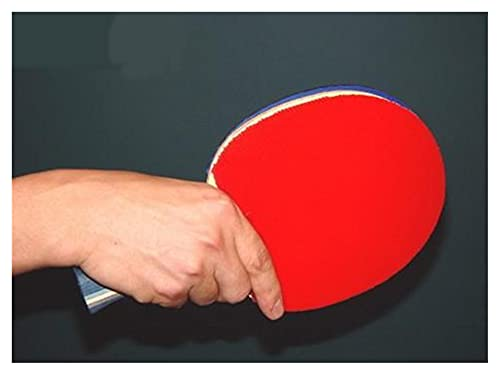 WANGYA Tischtennisschläger Professionelle ZLC-Tisch-Tennisschläger Set Offensive FL-Tischtennis-Schläger-Assembly Gummischläger Profi tischtennisschläger (Color : FL Long Handle)
