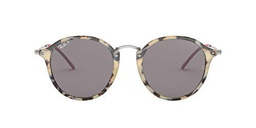Fashion Shopping Ray-Ban Rb2447 Fleck Round Sunglasses