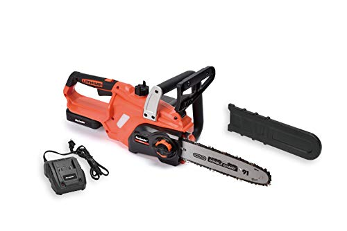 MaxLander Cordless Chainsaw Battery Powered with 20V 2.0Ah Battery and Fast Charger, 10 Inch Oregon Chain and Bar Auto Tension Wood Cutter