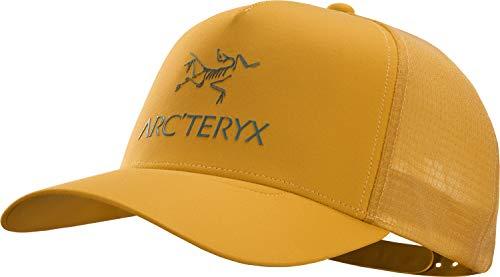 Arcteryx Logo Trucker Cap, Quantum