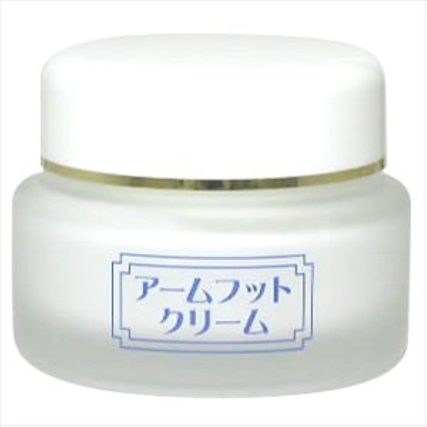 懐疑論予算パイル薬用デオドラントクリーム アームフットクリーム(20g) (1個)