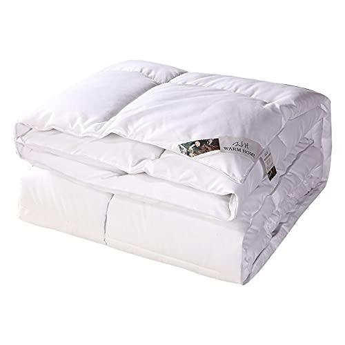 BIRANH EdredóN De Verano Anti-Allergy Duvet - Luxury White Goose Feather & Down Duvet -100% Algodón Anti-Polvo Mite & Down Proof Down-Blanco_220x240cm-2.5kg