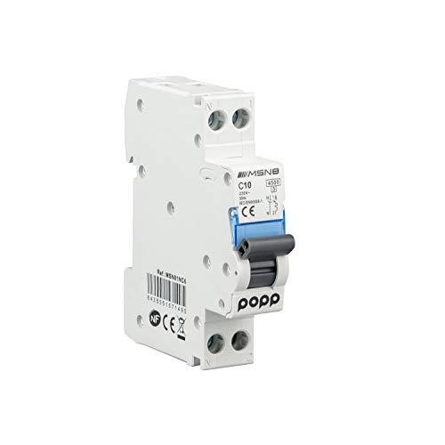 POPP Interruptor Automático Magnetotérmico industrial CURVA C DPN SERIE MSN81NC 6A 10A 16A 20A 25A 32A 40A (DPN, 10A)