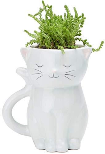 Streamline Keramik-Blumentopf Sweetie Cat