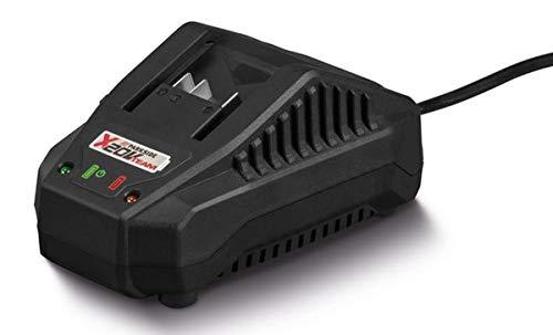 Parkside - Caricatore PLG 20 A1, 65 Watt, compatibile con X20V Team