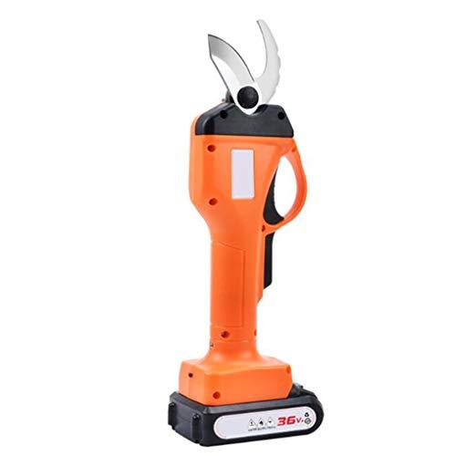 Best Price GYYY Electric Pruning Shears SK5 Blade,Powered Tree Branch Pruner,36v 2.0ah Lithium Batte...