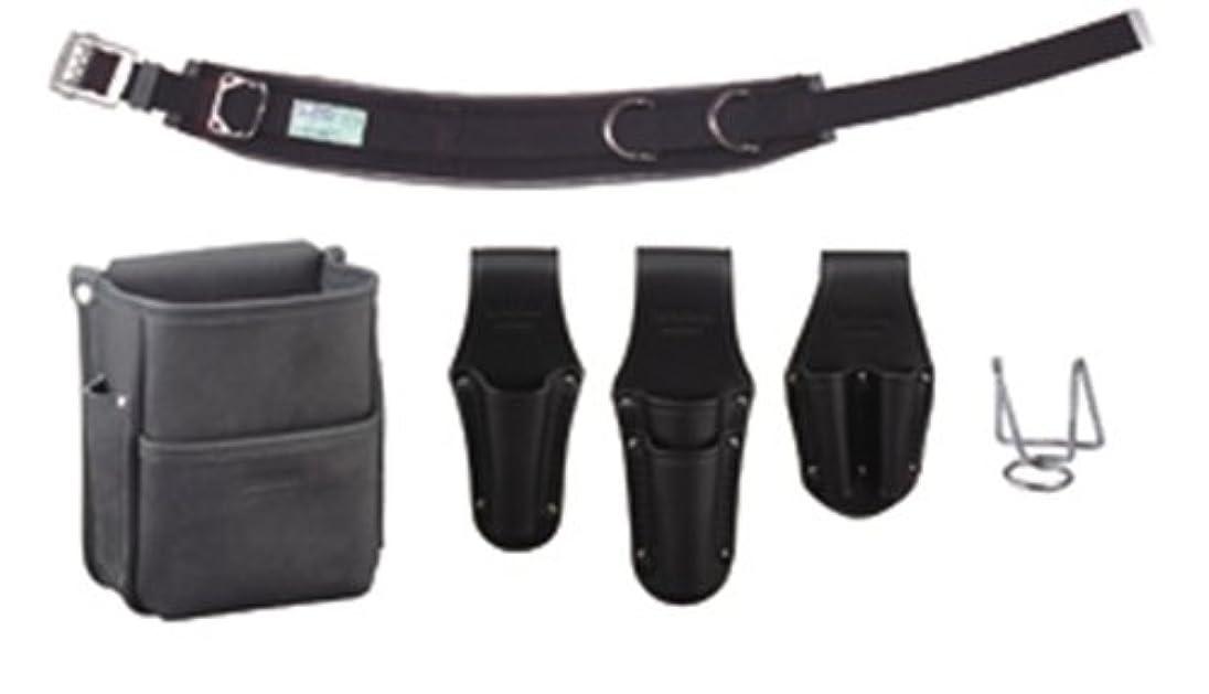 効果的人に関する限りレポートを書くデンサン 電工プロ腰道具セット JNDS-R96BK-SET