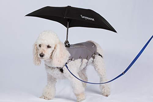 Seymour Dog Umbrella - Compact & Portable Umbrella, Waterproof & Windproof Travel Umbrella for Medium & Small Dogs, Sun Umbrella UV Protection, 2 in 1 Cute Umbrella & Dog Raincoat (Medium)