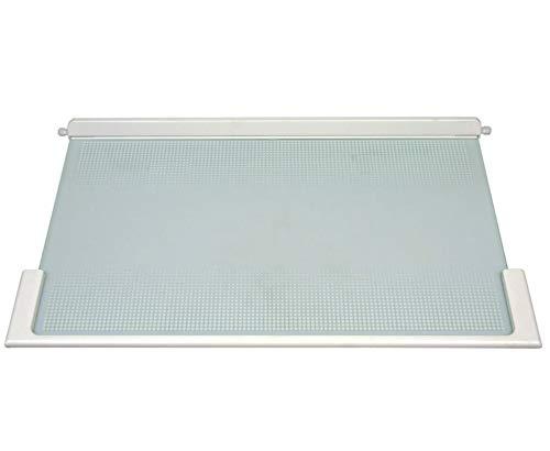 Glasplatte mit Halteleisten für Kühlschrank 495 x 300 x 25 mm Liebherr 9293003