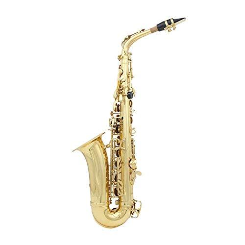 Saxophon E flach Alto Lade Silber Goldene Saxophon Professionelles Musikinstrument für Anfänger Messingband (Farbe: Silber) zhihao (Color : Golden)