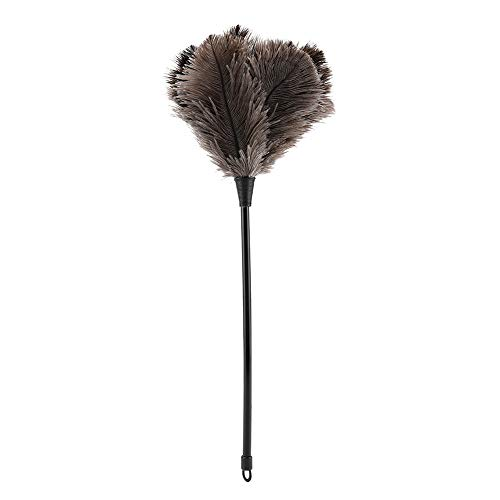 Real Feather Duster Feather Dusters, Duster, Ostrich Feather Duster, voor boeken voor toetsenbord