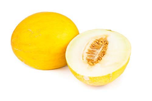 Canary Yellow Melon Seeds - Non-GMO - 2 Grams